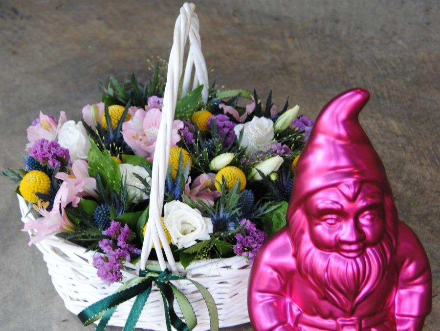 historias y flor silvestre Mayula flores