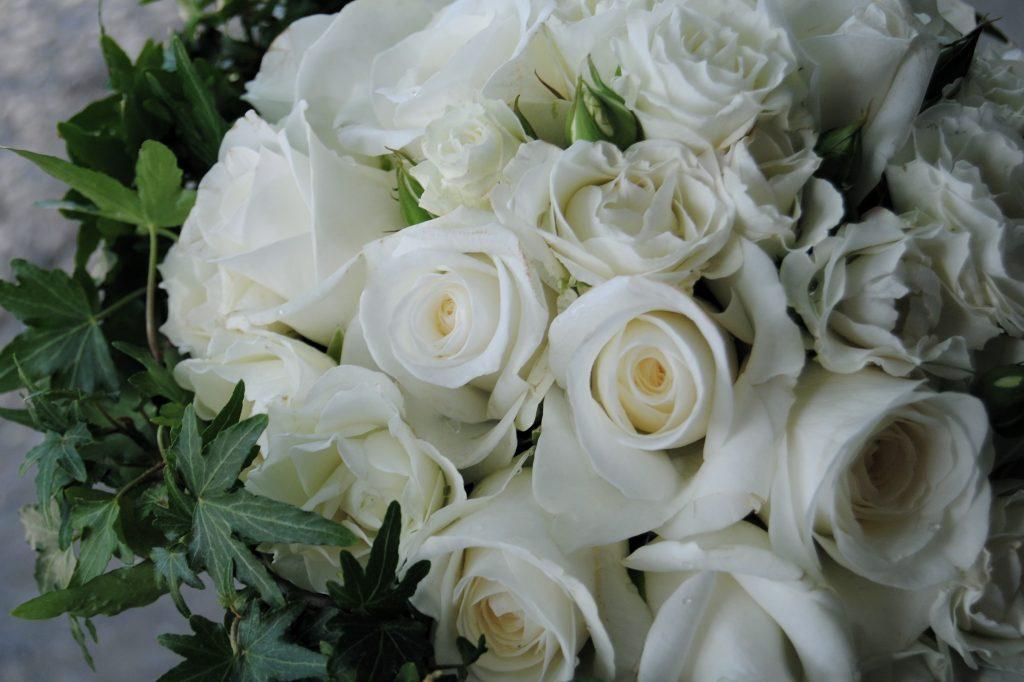 Ramo de novia de rosas blancas uy hiedra Mayula flores